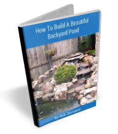 How To Build A Beautiful Backyard Pond