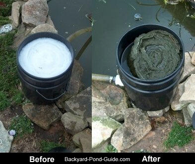 Homemade Pond Filter-Before & After